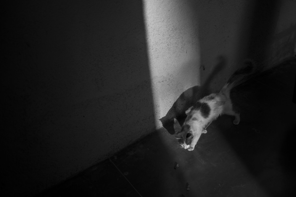 marrakesh161_blog