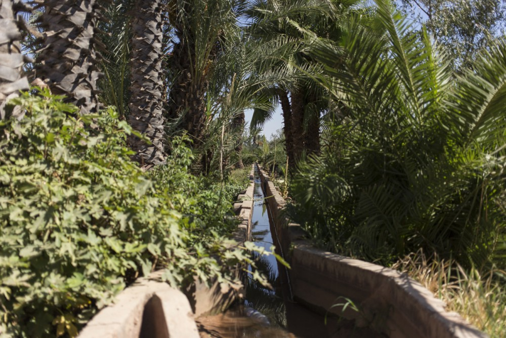 marrakesh188_blog