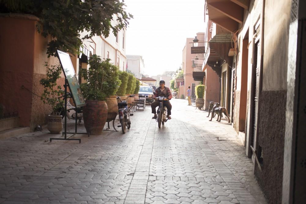 marrakesh264_blog