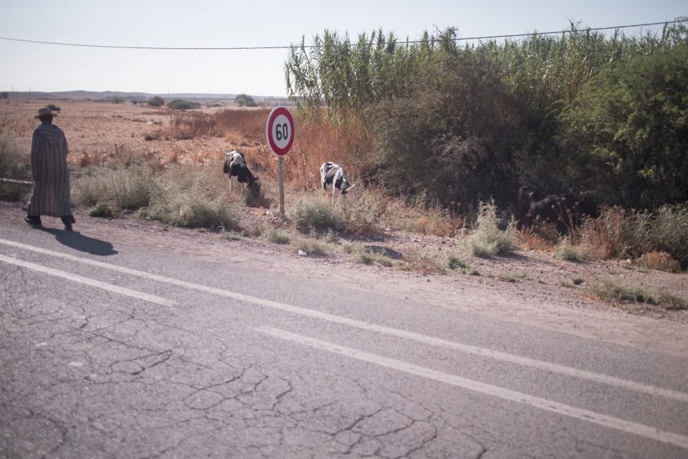marrakesh273_blog