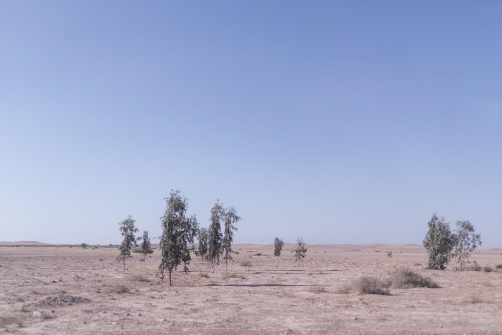 marrakesh274_blog