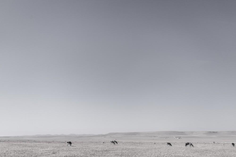 marrakesh277_blog