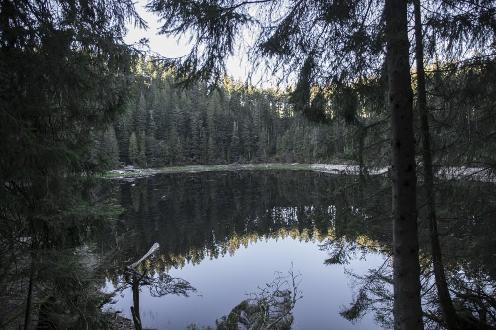 glaswaldsee15_002