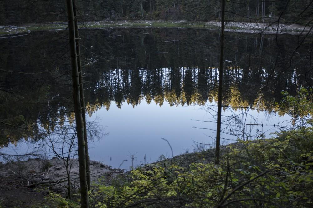 glaswaldsee15_003