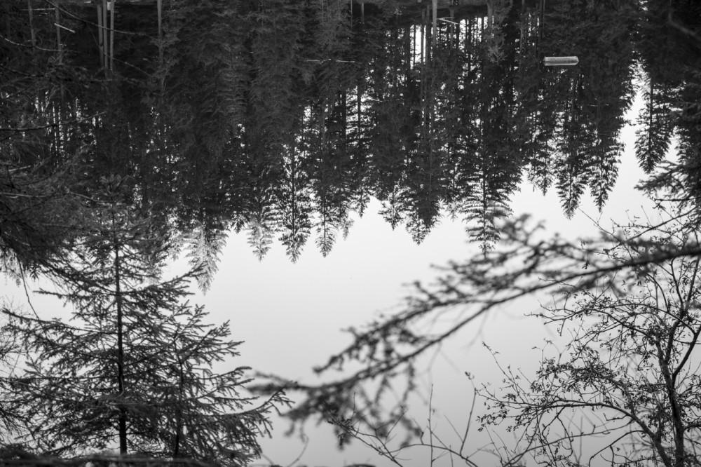 glaswaldsee15_005