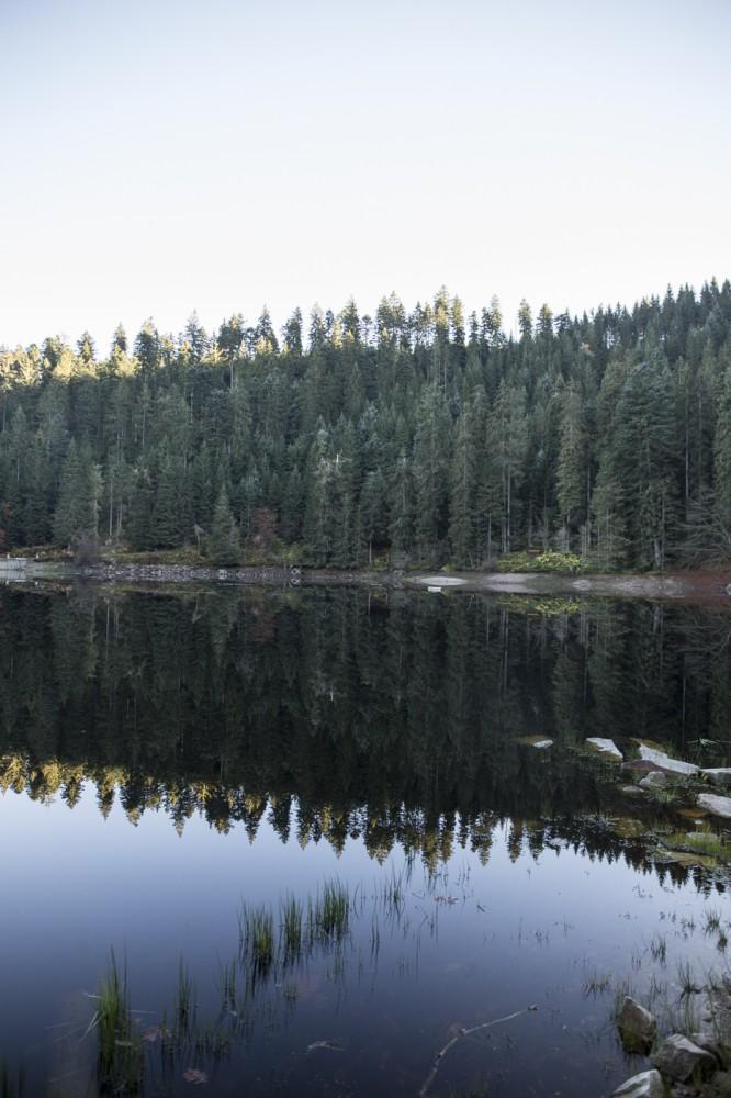 glaswaldsee15_008