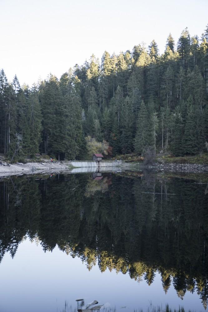 glaswaldsee15_014