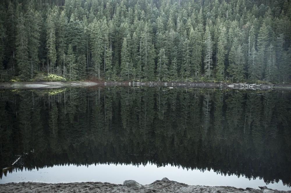 glaswaldsee15_025