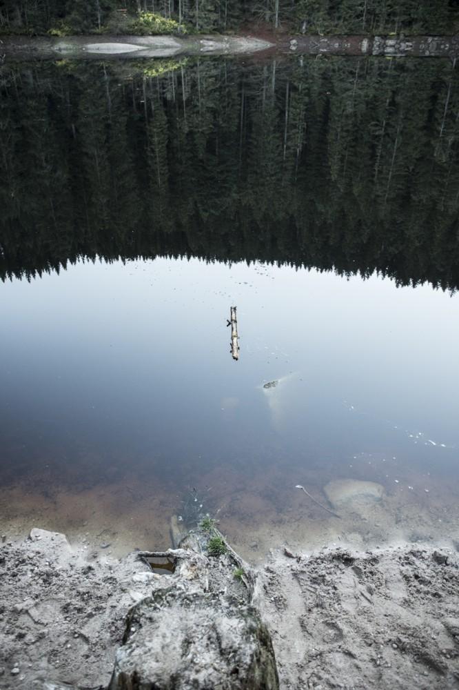 glaswaldsee15_031