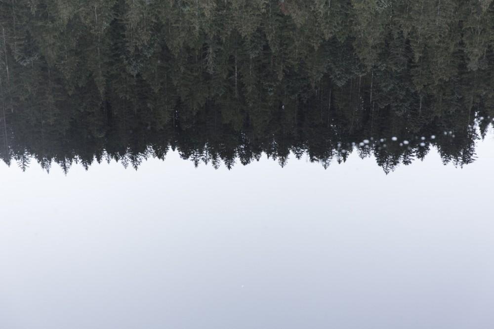 glaswaldsee15_036