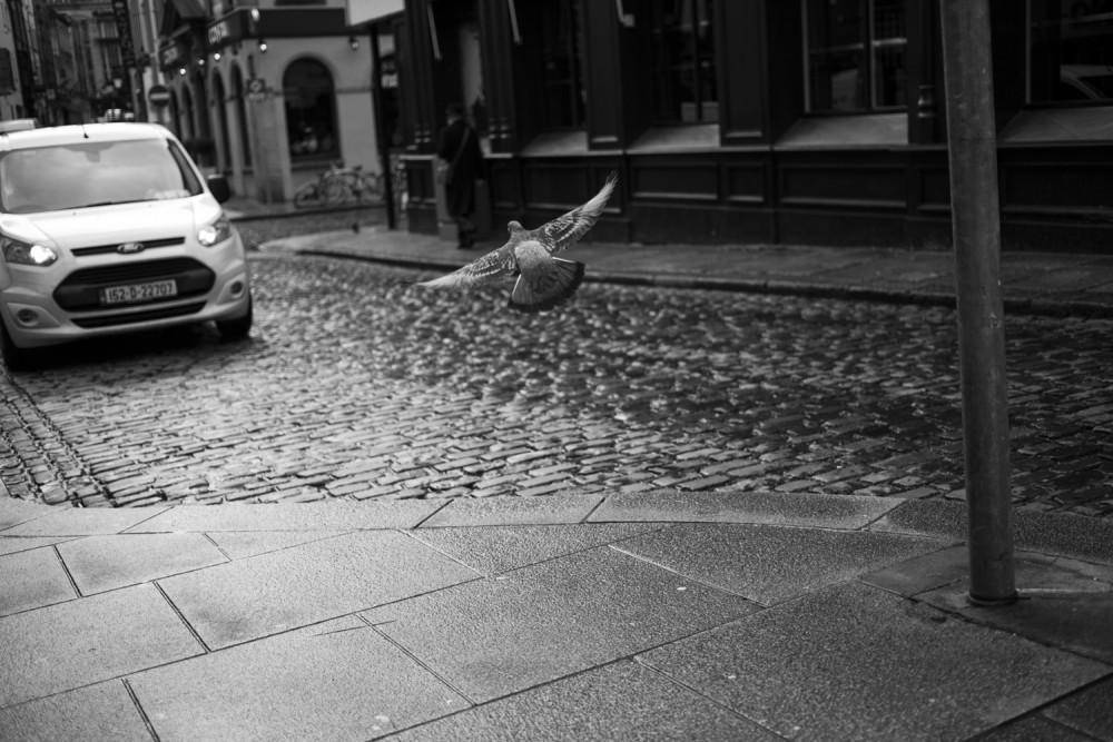 dublin_day4_sm_028